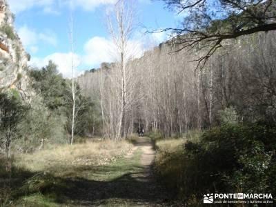 Parque Natural del Barranco Río Dulce;senderismo pirineo senderismo valencia rutas